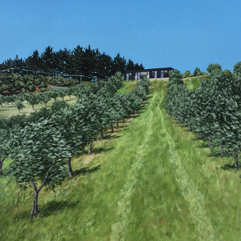 Original painting of an Olive grove